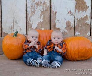 twins-pumpkins-crop